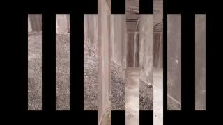 تصاویر از پروژه های اجرا شده با پانل های دیواری اکوتک