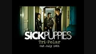 دومین کادوی تولدم به خودم :| Sick Puppies - You're going down lyrics