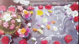 میکس کلیپ های بهشت زهرا با آهنگ ماه من(تقدیمی)(توضیحات مهم)