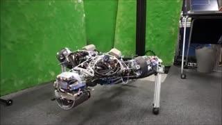 کنگورو، ربات جدیدی که «عرق» می کند [تماشا کنید]