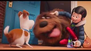 پیش نمایش انیمیشن PET 2016