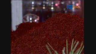 جشنواره گل زعفران در هرات
