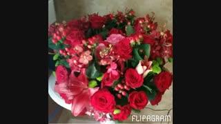 گلهای زیبا تقدیم به دوستان نماشایی ام