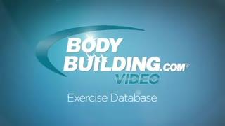 نمایش فیلم آموزش حرکات بدنسازی جلو ران اسکوات المپیک