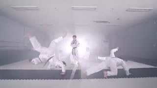 BTS  Blood Sweat  Tears ترکیب رقص با تکواندو با اهنگ بی تی اس Taekwondo
