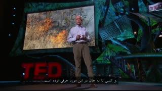 چگونه با بیابانزدایی، روند تغییرات آبوهوایی را معکوس کنیم؟