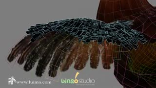 Realstic 3d rooster in 3ds max