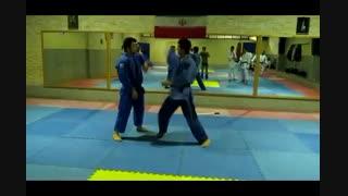 دفاع شخصی استاد علی محمدی (8)