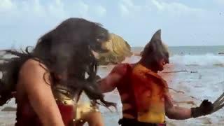 Wonder woman vs wolverine alga eanding