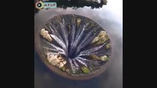 کلیپ زیبا-clip-دریا-آب-موزه-حرکت-dd12-ddddd12