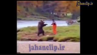 نبرد وحشتناک خرس گریزلی و انسان