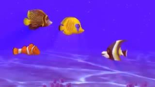 سفر از برکه به دریا کاری به تهیه و کارگردانی مهدی طباطبایی - animatio directed and produced by mehdi tabtabaie