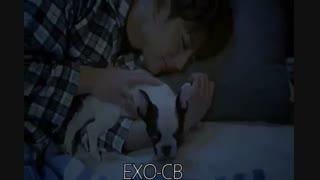 میکس طنز اهنگ خوابم میاد از اشکین  0098 با موزیک ویدیو های کره ای (ikon-آی کن)