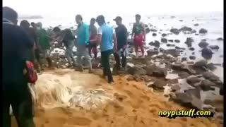 پیدا شدن موجودی عجیب در سواحل فیلیپین!!
